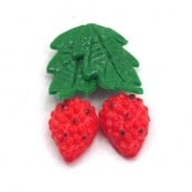 Raspberry Magnets (Set of 49)