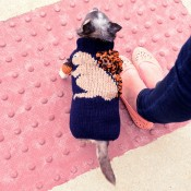 Dog Sweater - XS
