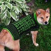 Dog Sweater - M