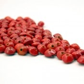 Chocho Platillo Beads (200 Ct)