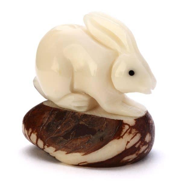 Rabbit (A)