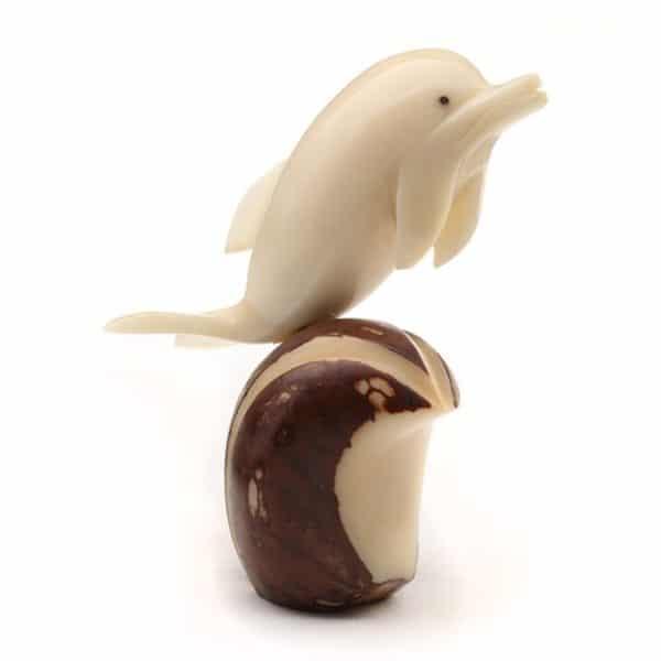Dolphin (B)