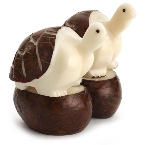 Turtle Pair (B)