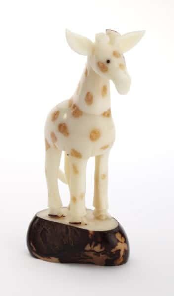 Giraffe (C)
