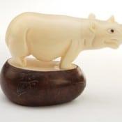 Rhino (B)