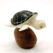 Turtle, Sea (B)
