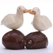 Duck Pair (C)