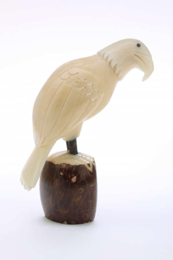 Eagle (C)