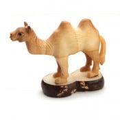 Camel (D)