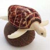 Turtle, Sea (D)