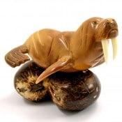 Walrus (E)