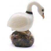 Swan (B)