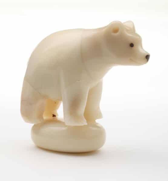 Polar Bear (B)