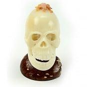 Skull (E)
