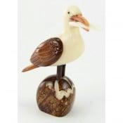 Seagull (C)