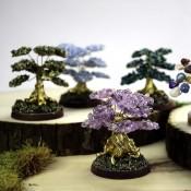 Gold Cascajo Tree