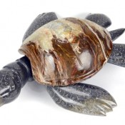 Display Marble/Onyx Turtle - L