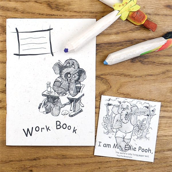 Work Book and Storybook Combo